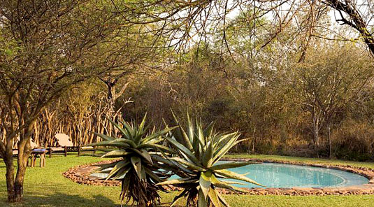 Jaci's Safari Lodge - Madikwe Game Reserve - Swimming Pool