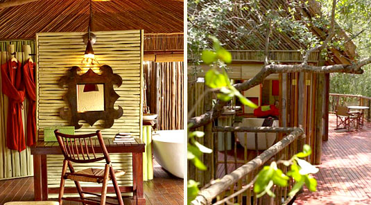 Jaci's Tree Lodge - Madikwe Game Reserve - Luxurious Suite Bathroom & Walkway