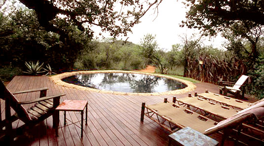Jaci's Tree Lodge - Madikwe Game Reserve - Main Lodge Swimmimg Pool