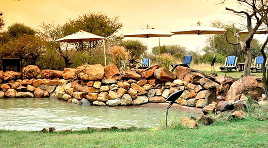 Madikwe River Lodge - Swimming Pool