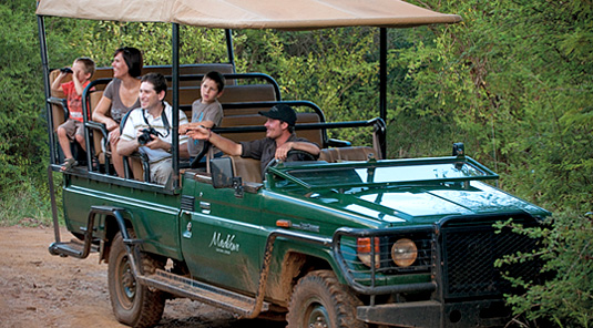 Family Game Drives - Madikwe Safari Lodge - Madikwe Game Reserve