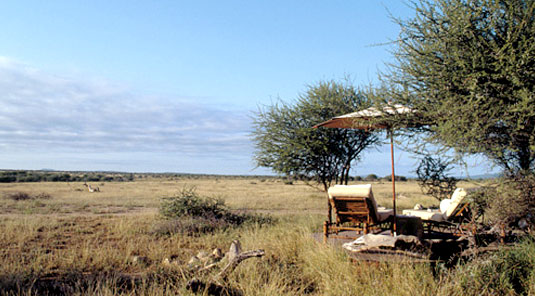 Makanyane Safari Lodge - Madikwe Game Reserve - Lounger