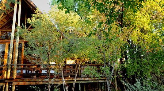 Thakadu River Camp - Main Lodge Deck - Madikwe Game Reserve