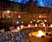 Jaci's Tree Lodge - Madikwe Game Reserve Lodge Accommodation