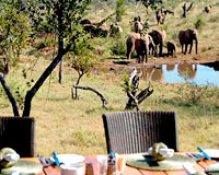 Royal Madikwe Game Lodge - Madikwe Game Reserve Lodge Accommodation